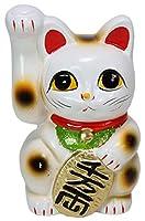 常滑焼招き猫 白手長小判猫3号(右手) [ 6 x 6 x 9.9cm ] 【 縁起物 置物 インテリア かわいい 日本土産 】