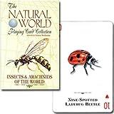 【様々な種類の昆虫たち】トランプ ナチュラル・ワールド 世界の昆虫