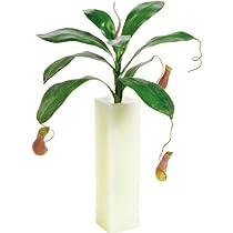 エフプランター 人工観葉植物-ウツボカズラ-34-本体のみ