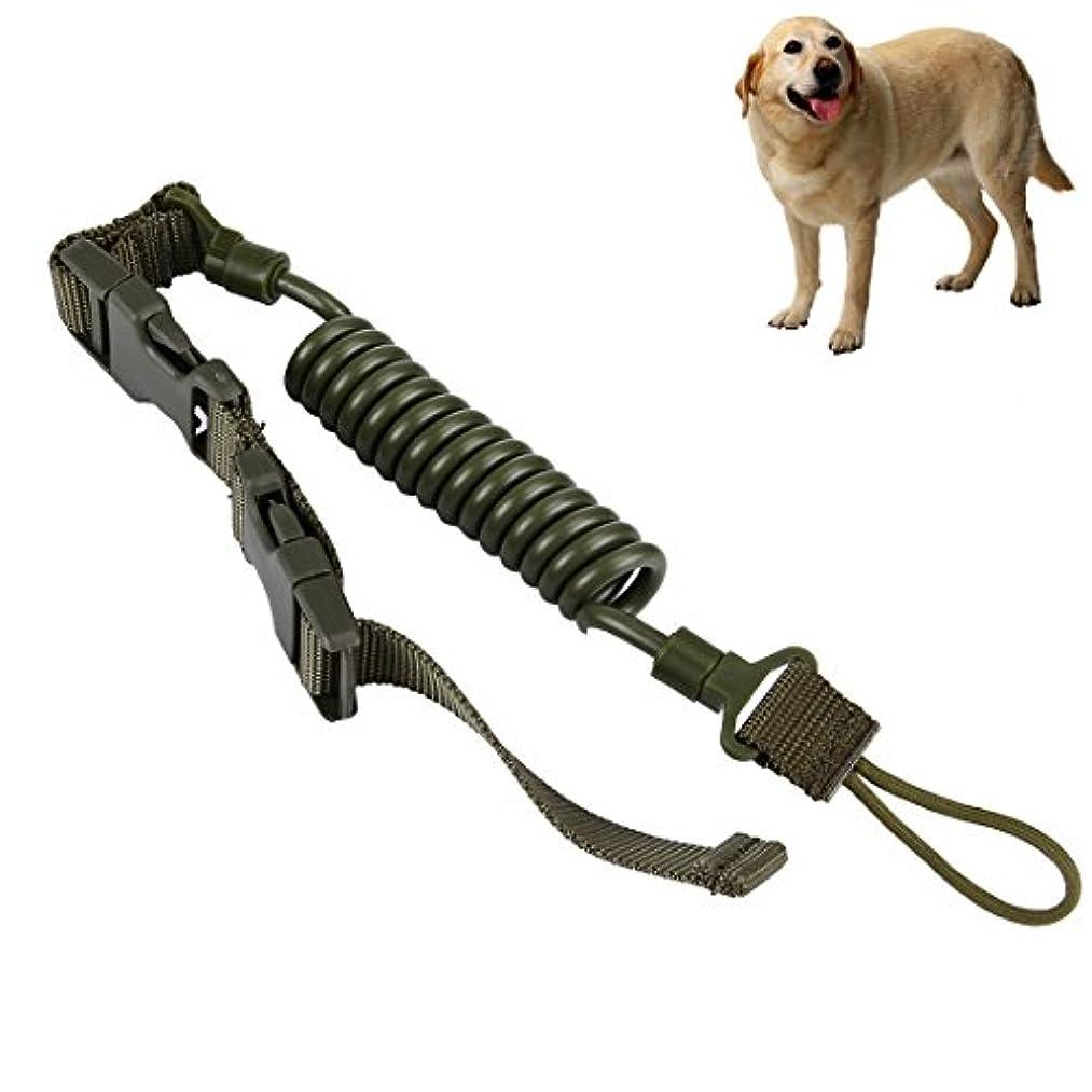 スポンサーオーバーラン繊細LYL 毎日の散歩のための1.1メートル高校品質犬の鎖 (色 : アーミーグリーン)