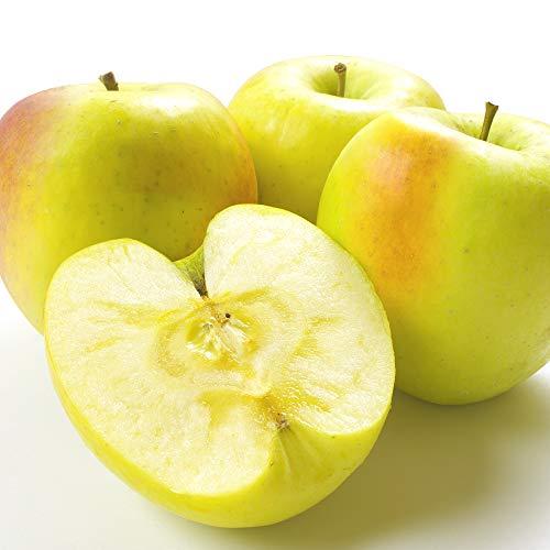 国華園 青森産 ぐんま名月 5kg1箱 りんご