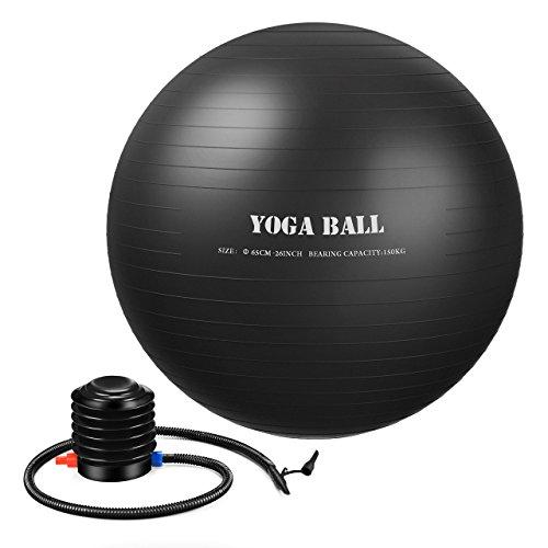 ElleSye バランスボール ヨガボール フィットネスボール 65cm PVC アンチバースト 空気入れ付 ジム/家/職場などに適用