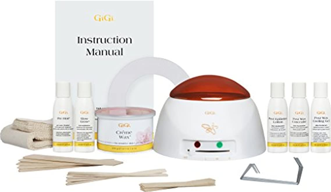 ガイダンス打ち上げる適合Gigi Mini-Pro Kit Heater/Wax/Lotion/Wax-Off/Gel (並行輸入品)