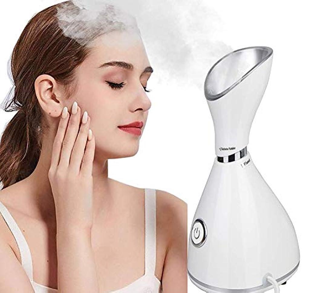 水っぽい広まったライトニング顔の蒸気の保湿のナノイオン噴霧器の水和の熱い霧、お肌のクリーニング、加湿器用スチームマスク、取り外し 予防、ホームサロンサウナスパパーソナルボディスキンケア美容 Facial Steamer Moisturizing Hydrating Face Cleanse Humidifier