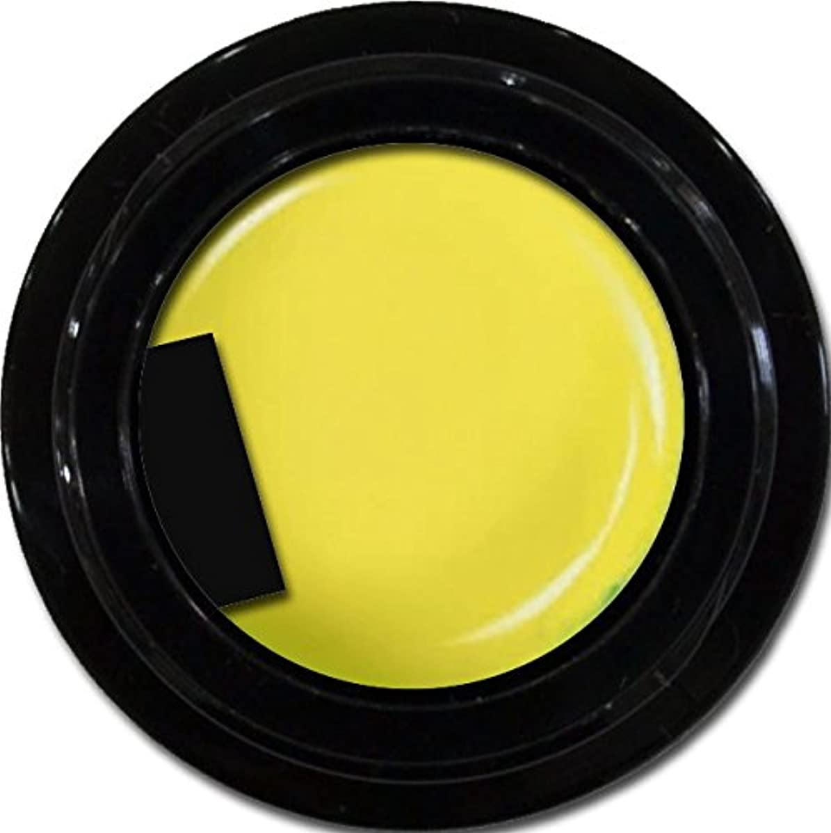 鉛筆カポック補助カラージェル enchant color gel M602 MoroccoYellow 3g/ マットカラージェル M602 モロッコイエロー 3グラム
