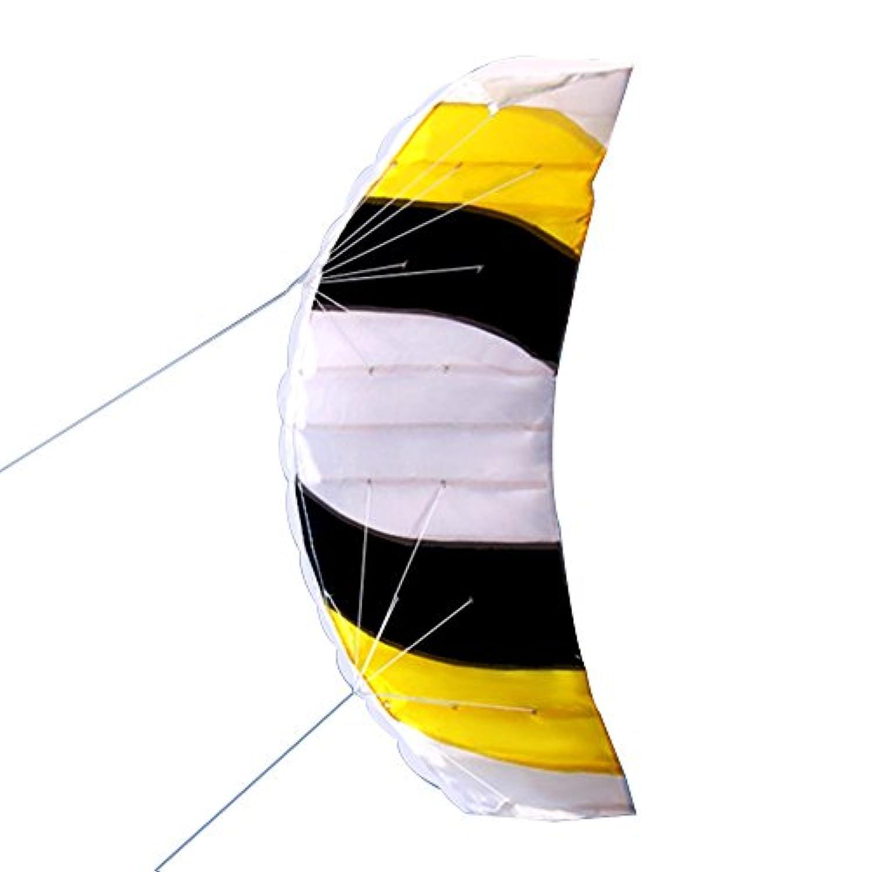 walmeck Dual Line Stunt Parafoil KiteアウトドアスポーツFunビーチFlying Kite Toy with 30 mライン