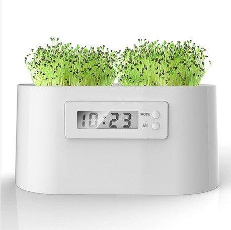 WAYCOM ミニ植物発電所 マイクロ植物発電できる置き時計 植物電気時計 インテリア グリーン観葉植物