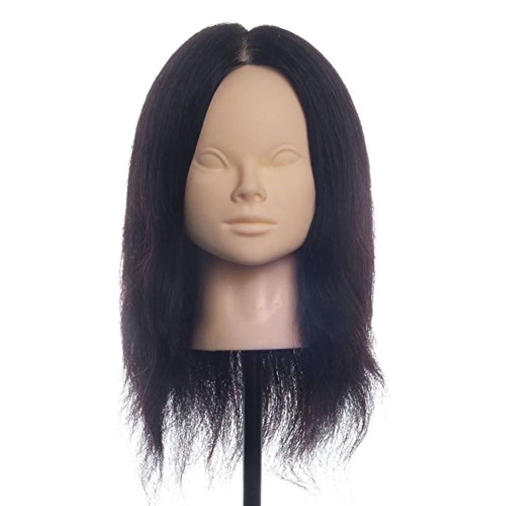 一般的に印刷するコース100%人毛 カットウィッグ 練習用ウィッグ 美容師ウィッグ サロン専売品 プロ愛用メイクトレーニングカットマネキン ヘアマネキン 多毛量 パーマ カラー可能