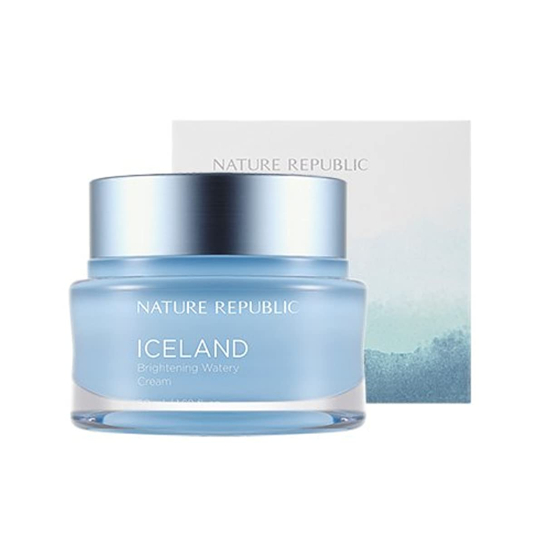 ぐるぐるによって現代のNature Republic Iceland Brightening Watery Cream 50ml / ネイチャーリパブリック アイスランドランドブライトニング水分クリーム 50ml [並行輸入品]