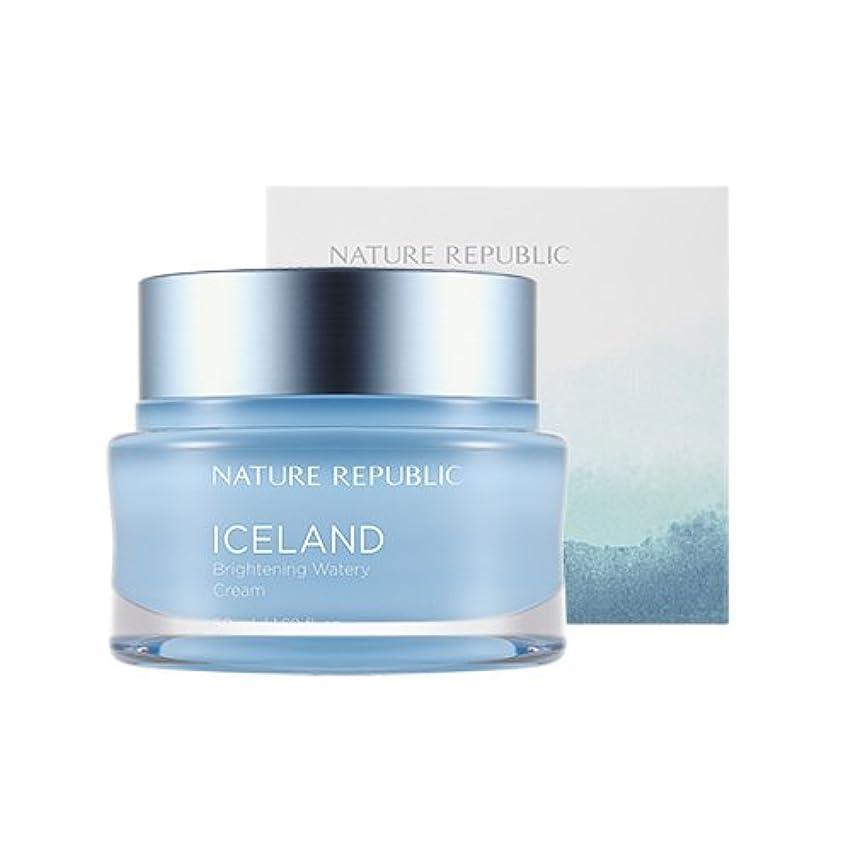 縮れたブラシソファーNature Republic Iceland Brightening Watery Cream 50ml / ネイチャーリパブリック アイスランドランドブライトニング水分クリーム 50ml [並行輸入品]