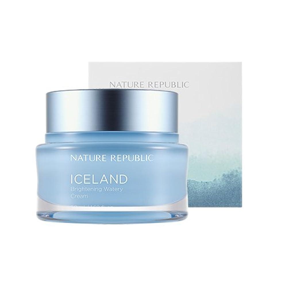 メジャー見えない圧力Nature Republic Iceland Brightening Watery Cream 50ml / ネイチャーリパブリック アイスランドランドブライトニング水分クリーム 50ml [並行輸入品]
