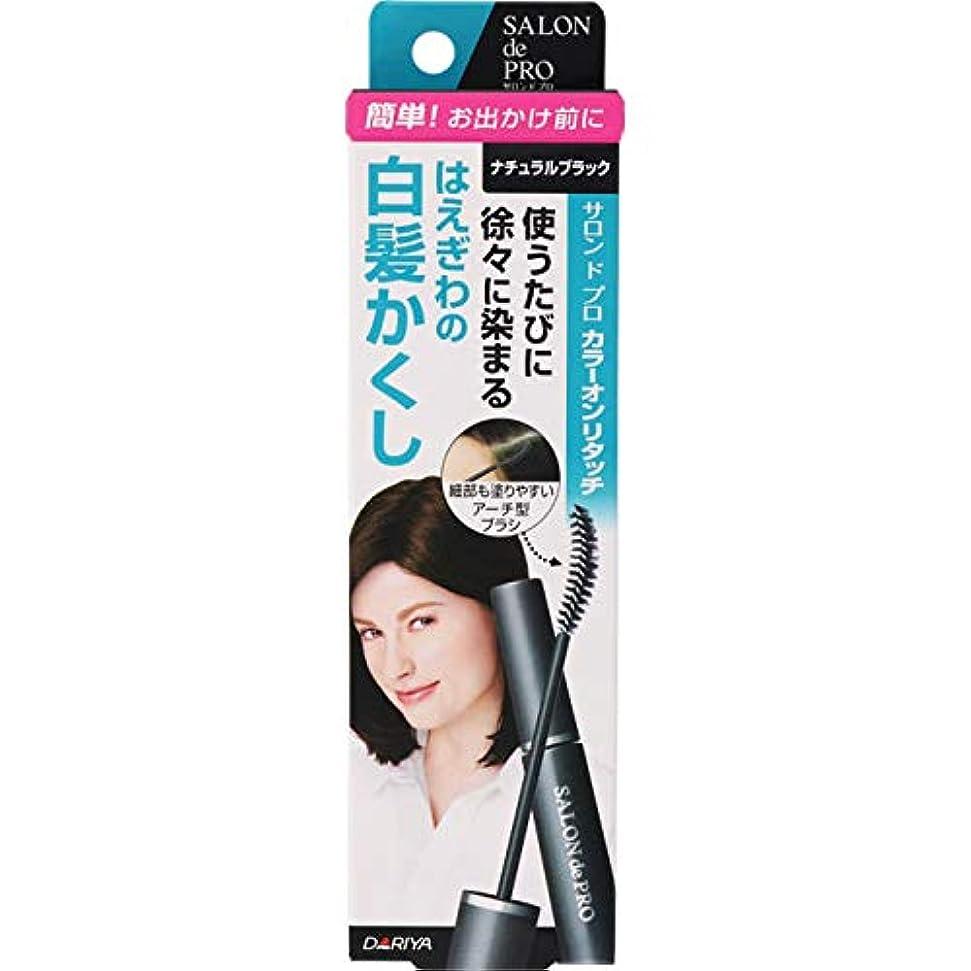 ずらす手荷物聖域サロンドプロ カラーオンリタッチ 白髪かくしEX ナチュラルブラック