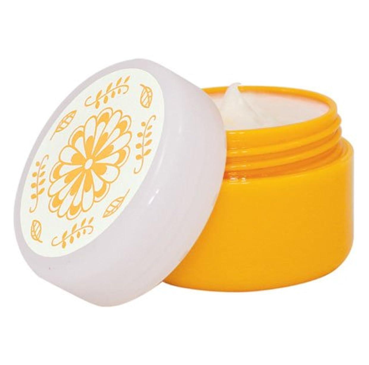 もろい藤色ふざけたゴールドコスメ 夏のクリーム 40g