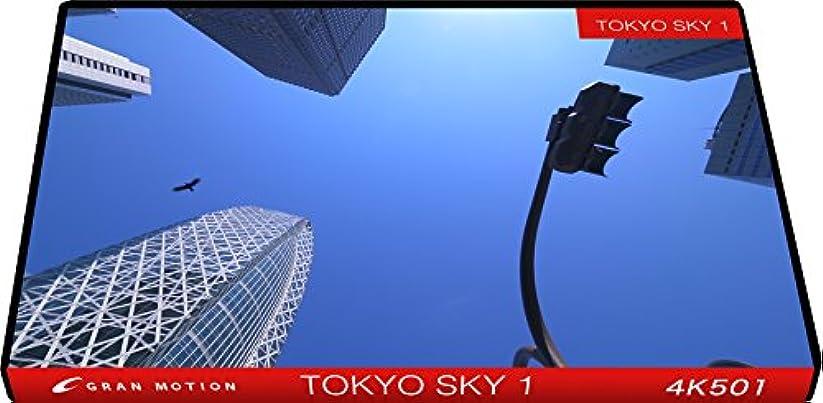 4K501_4K動画素材集グランモーション TOKYO SKY 1(ロイヤリティフリーDVD素材集)