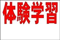 シンプル看板L 「体験学習 余白付(赤)」<スクール・塾・教室>屋外可(約H91cmxW60cm)
