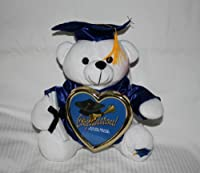 "10"" Graduation Teddy Bear with Cap, Gown and Diploma Plush [Toy] [並行輸入品]"