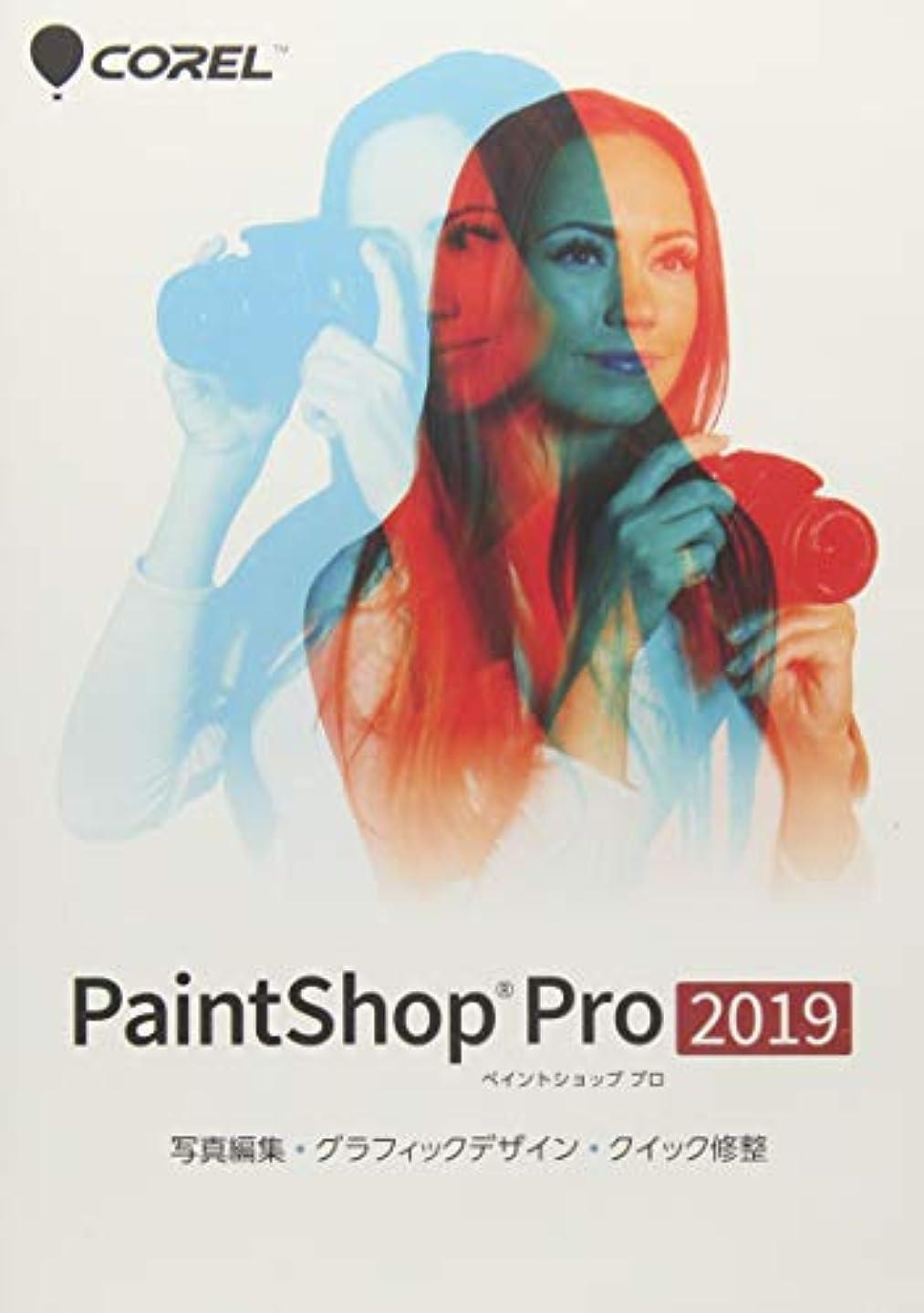 ピッチとして銀行PaintShop Pro 2019