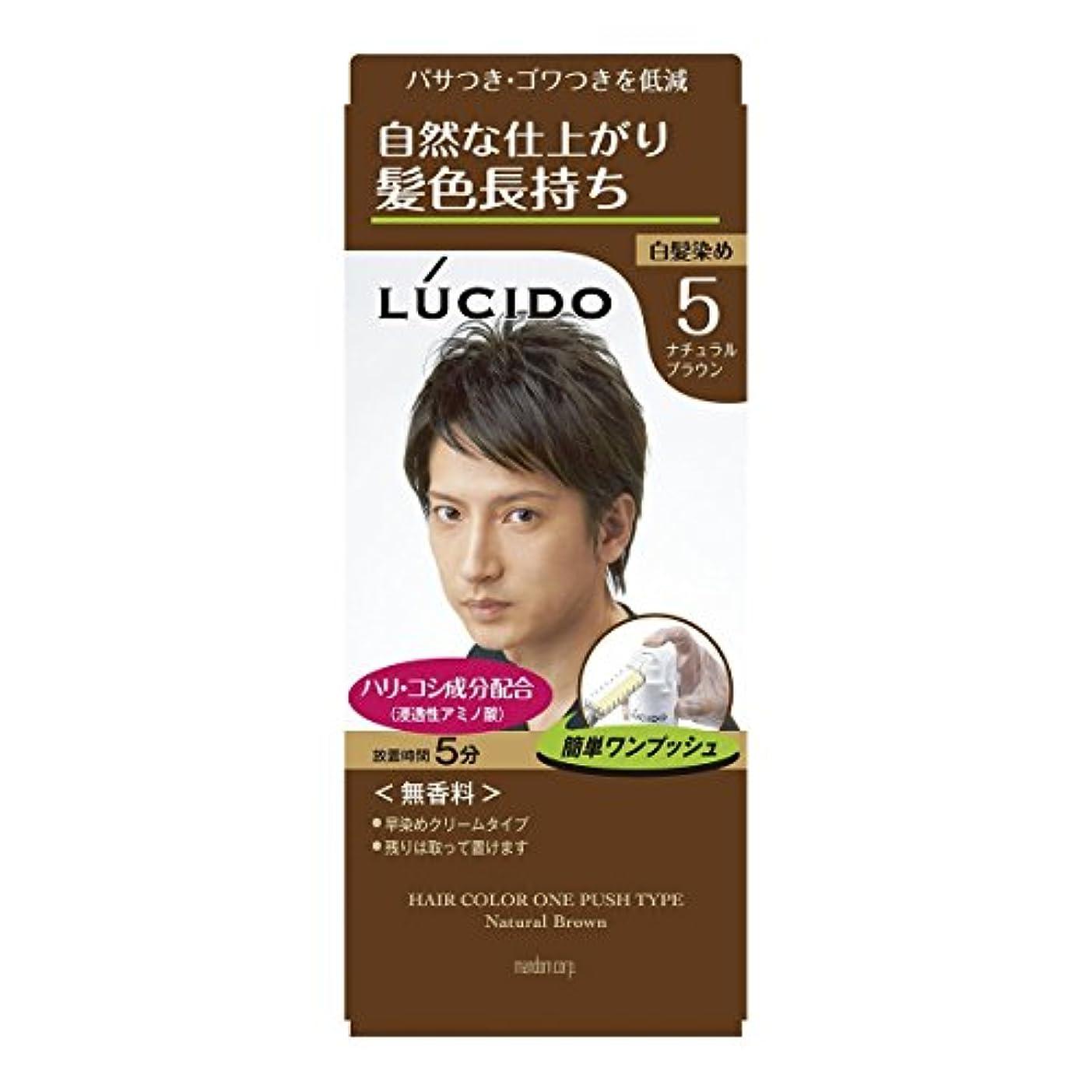 【マンダム】ルシード ワンプッシュケアカラー 5 ナチュラルブラウン 1剤50g?2剤50g ×5個セット