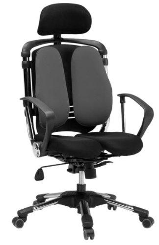 Hara Chair(ハラチェア)ニーチェ(グレー)オフィスチェア オフィスチェアー 高機能チェア 高機能チェアー 高機能 パソコンチェアー デスクチェアー リクライニング ハイバック メッシュ 腰痛 イス 椅子 事務用 回転 チェア (HARAチェアー ハラチェアー)