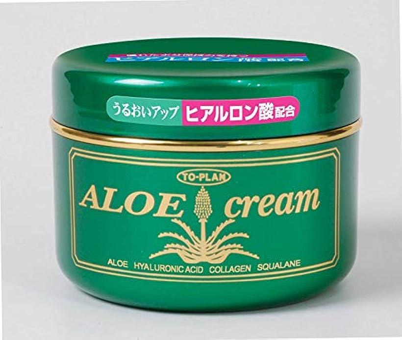 アイスクリームリル独立トプラン ヒアルロン酸配合アロエクリーム 170g