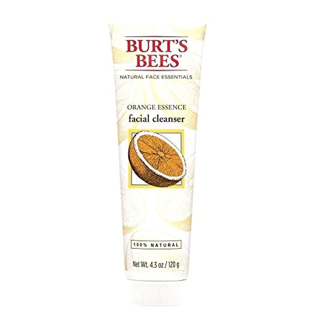 主流縫い目コンベンションバーツビーオレンジエッセンス洗顔料、125グラム (Burt's Bees) (x2) - Burt's Bees Orange Essence Facial Cleanser, 125g (Pack of 2) [並行輸入品]