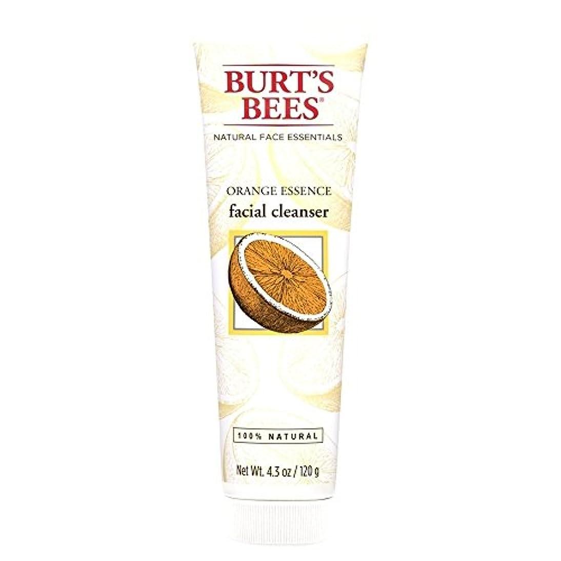 奨励します福祉不適切なバーツビーオレンジエッセンス洗顔料、125グラム (Burt's Bees) - Burt's Bees Orange Essence Facial Cleanser, 125g [並行輸入品]