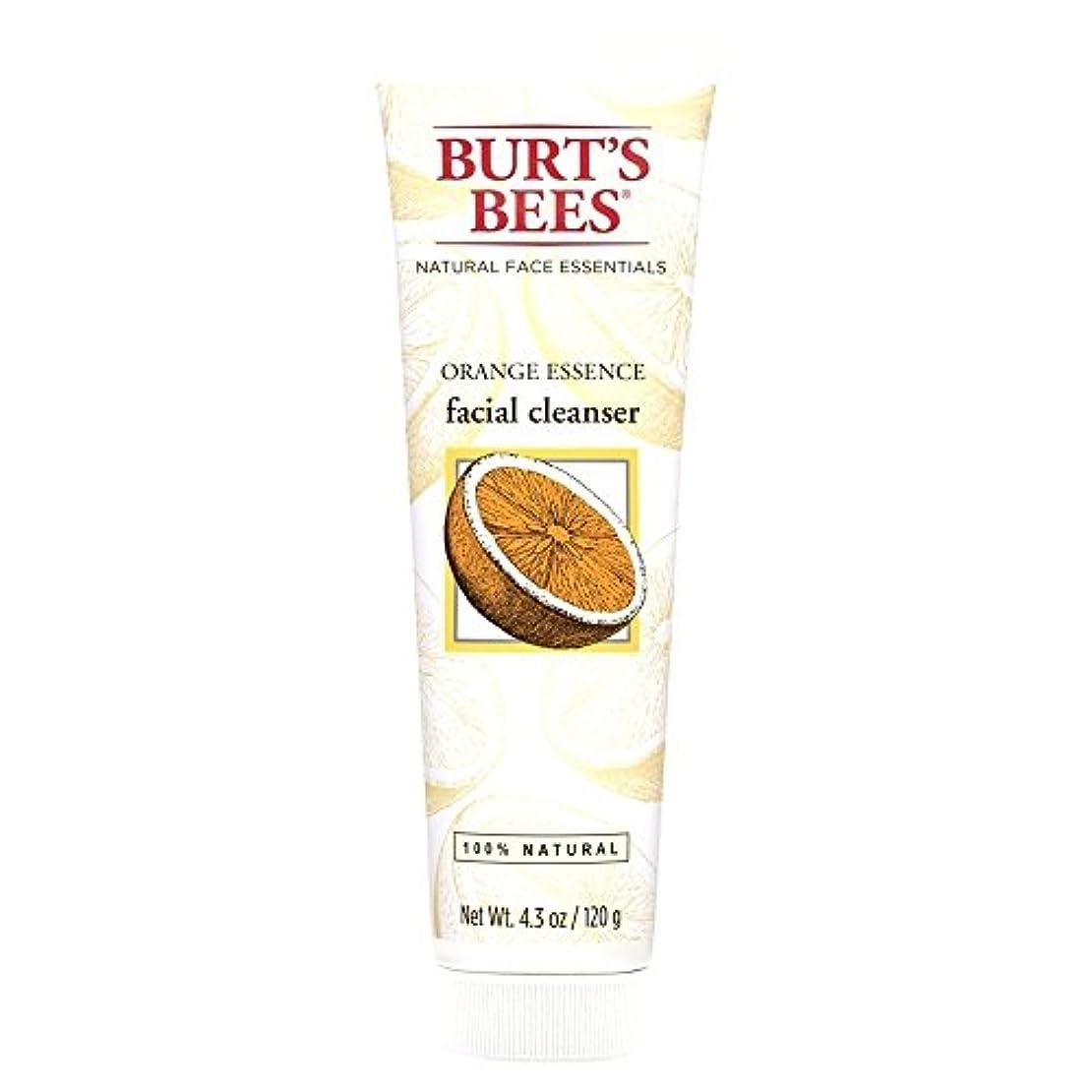 食事品揃え別れるバーツビーオレンジエッセンス洗顔料、125グラム (Burt's Bees) (x6) - Burt's Bees Orange Essence Facial Cleanser, 125g (Pack of 6) [並行輸入品]
