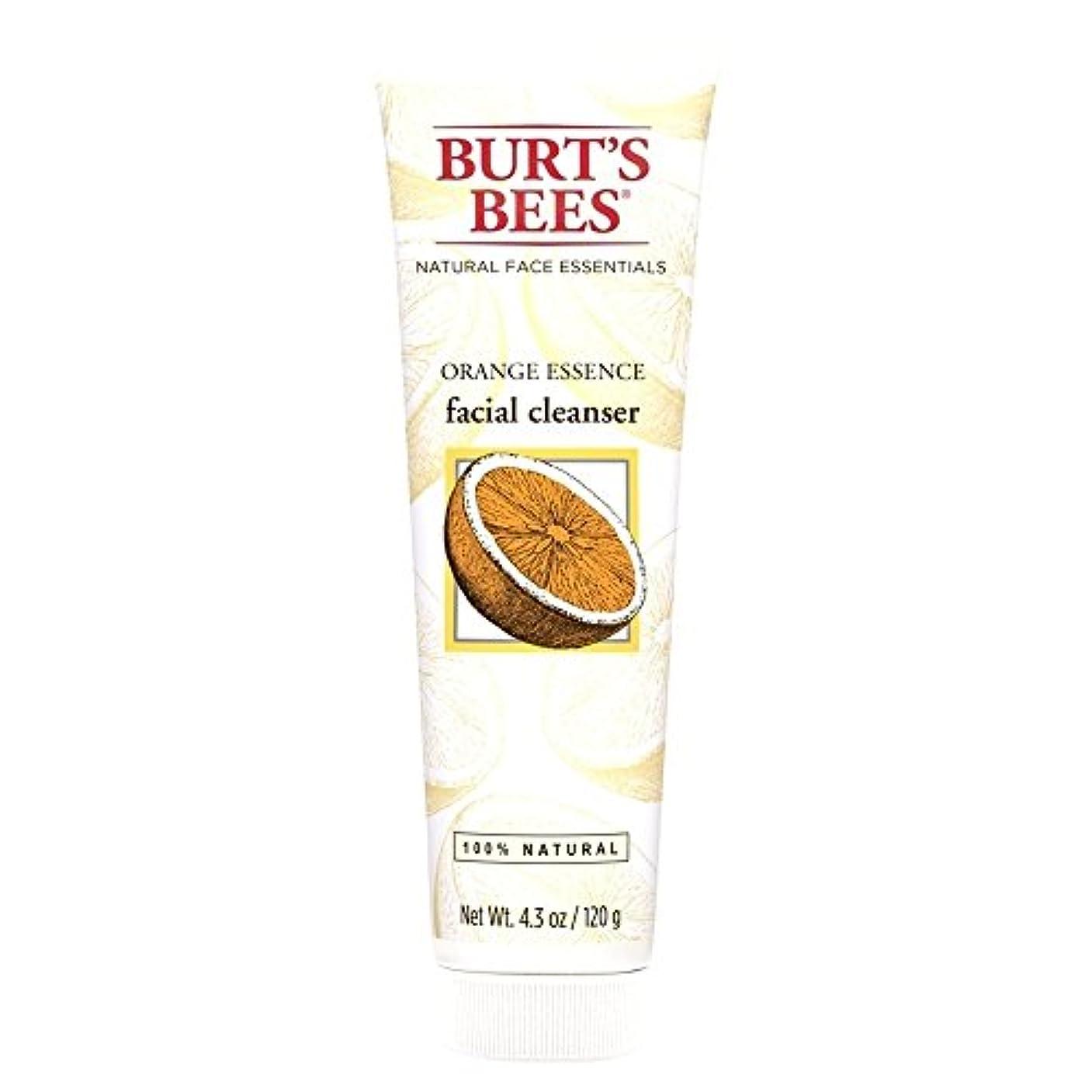 フレッシュ表示ジェスチャーバーツビーオレンジエッセンス洗顔料、125グラム (Burt's Bees) (x6) - Burt's Bees Orange Essence Facial Cleanser, 125g (Pack of 6) [並行輸入品]