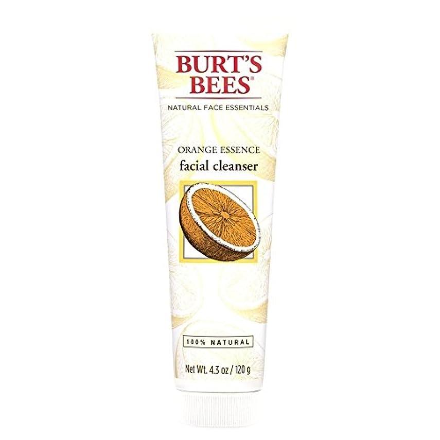 大聖堂ハイライトヶ月目バーツビーオレンジエッセンス洗顔料、125グラム (Burt's Bees) - Burt's Bees Orange Essence Facial Cleanser, 125g [並行輸入品]