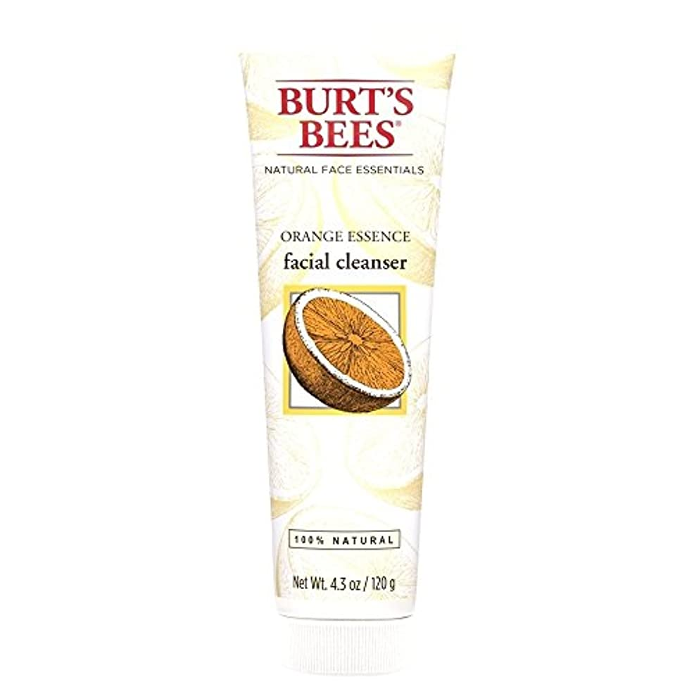パッケージ危険を冒しますラジカルバーツビーオレンジエッセンス洗顔料、125グラム (Burt's Bees) (x6) - Burt's Bees Orange Essence Facial Cleanser, 125g (Pack of 6) [並行輸入品]