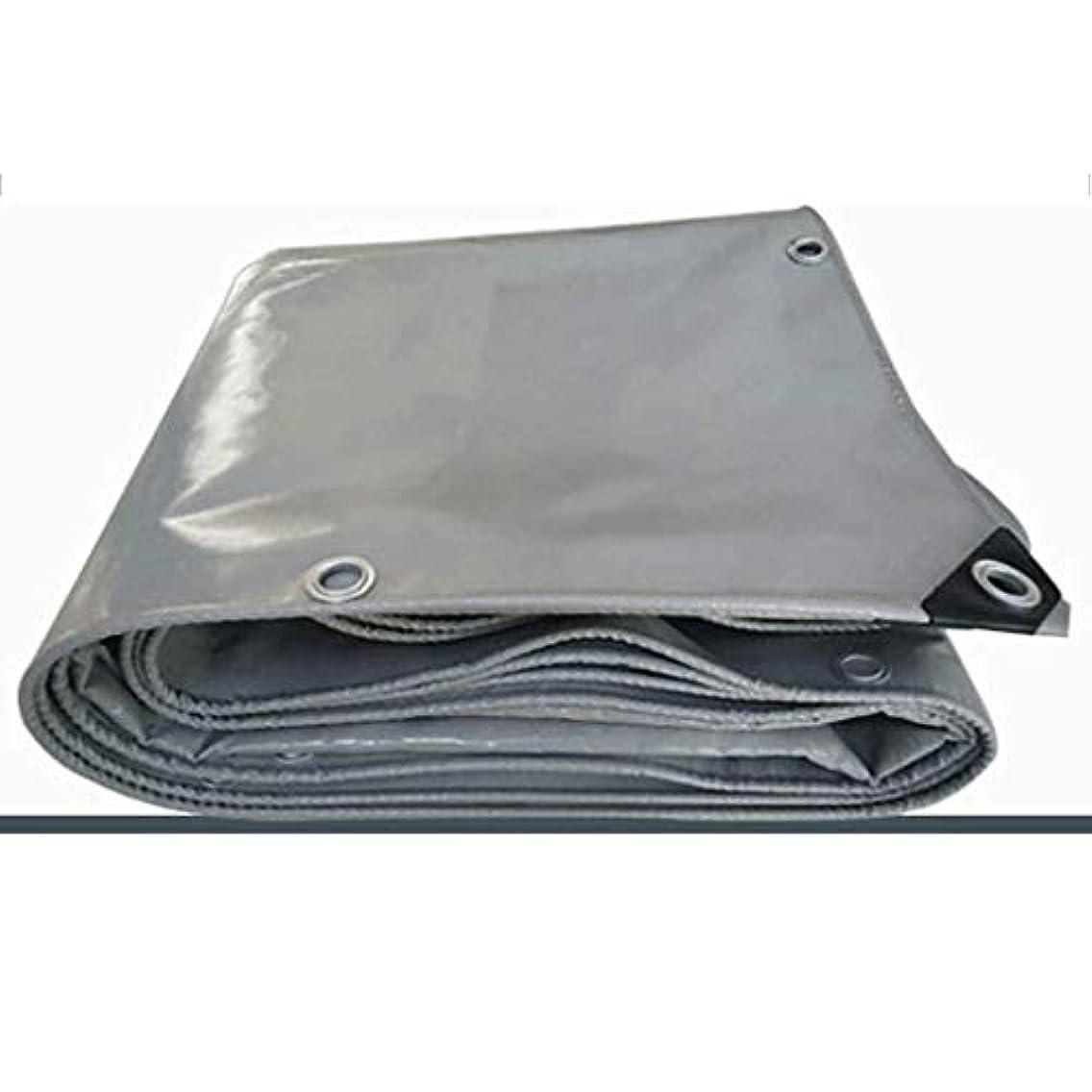 バラ色対応詳細な油布ポンチョpvcナイフこする布車防水日焼け止めキャンバスサンシェードトラック防水シートカスタム (Color : Gray, Size : 4x6m)