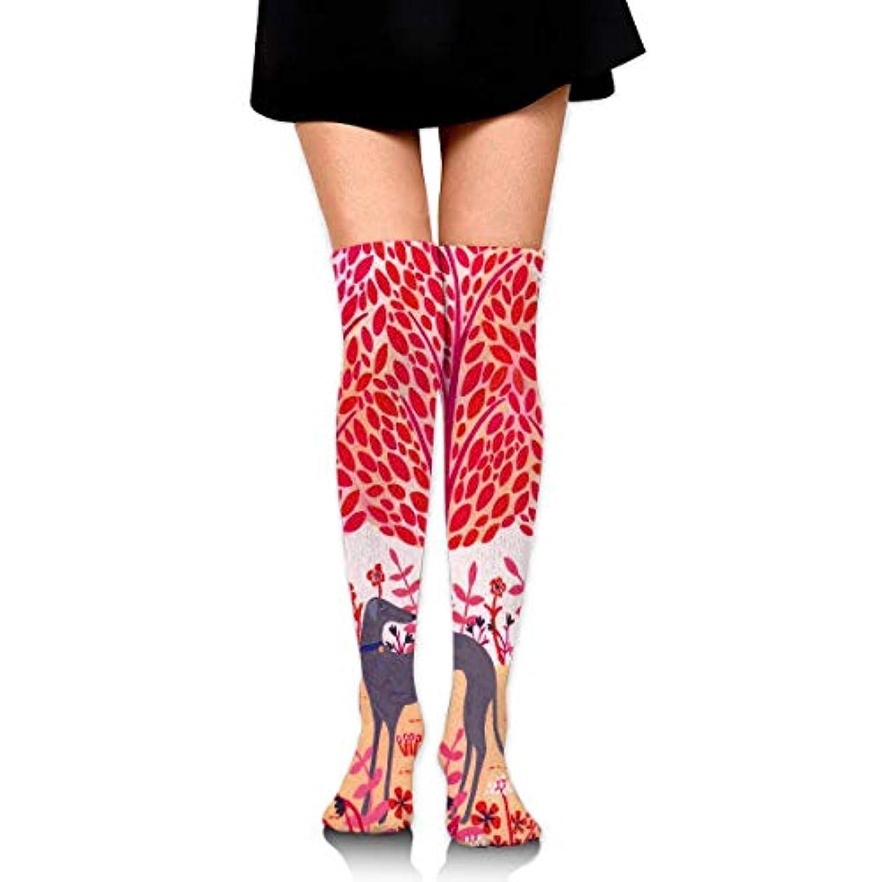 サージ論争赤MKLOS 通気性 圧縮ソックス Breathable Extra Long Cotton Mid Thigh High Autumn Greyhound Exotic Psychedelic Print Compression...