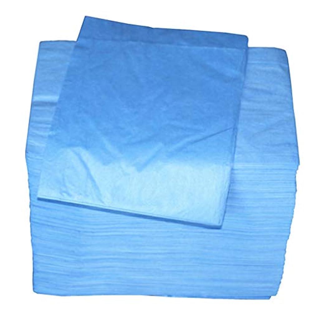 適応インフルエンザ小屋P Prettyia 使い捨てベッドシーツ 美容シーツ 約80 x 180 cm 約100個 全2色 - 青