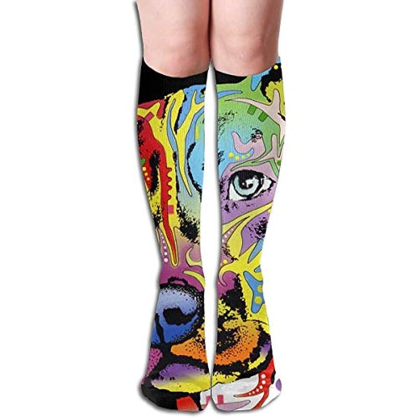 召喚する戦士スモッグストックフォト- Qririyアスレチックソックスピットブルカラフルな靴下の男性のための長い靴下