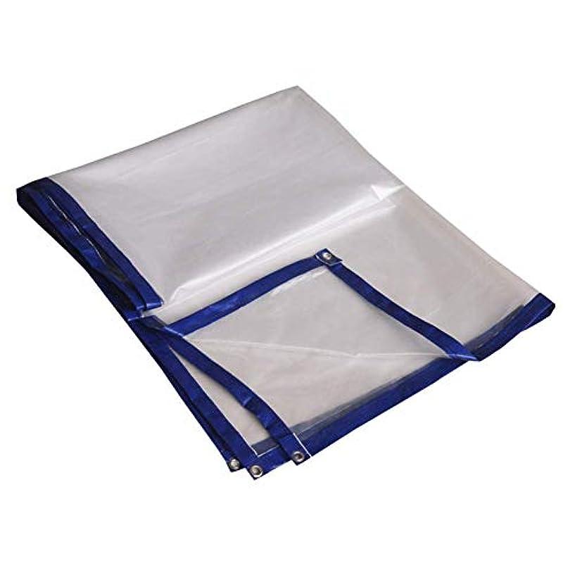 忠誠銃論理防水シート厚手多機能日焼け止め防水防塵透明プラスチッククロス複数のサイズをカスタマイズできます GMING (サイズ さいず : 10x10m)