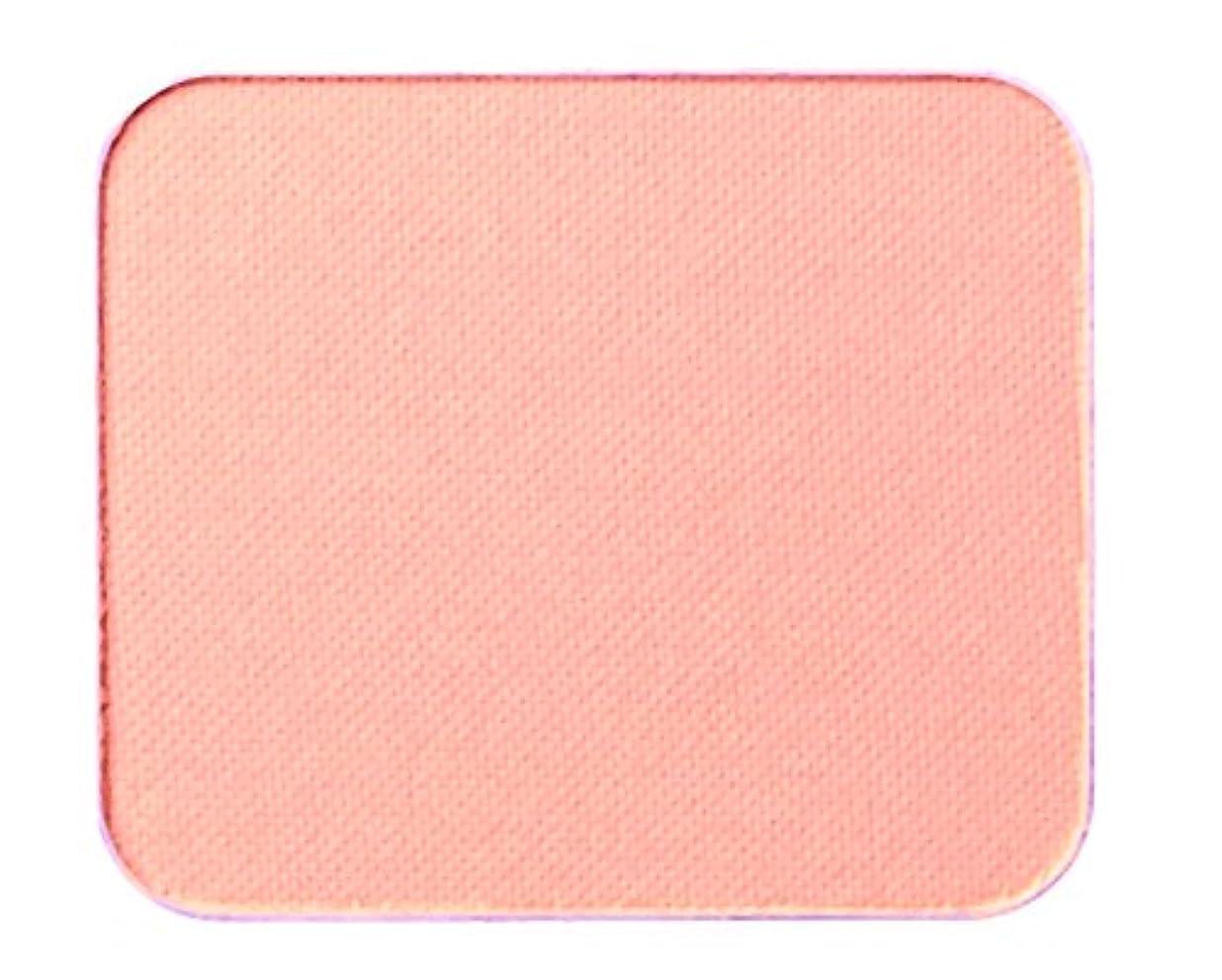 不毛の防ぐチャーターエクスボーテ エアーラスティングパウダークリスタルモイスト ナチュラル (レフィル)