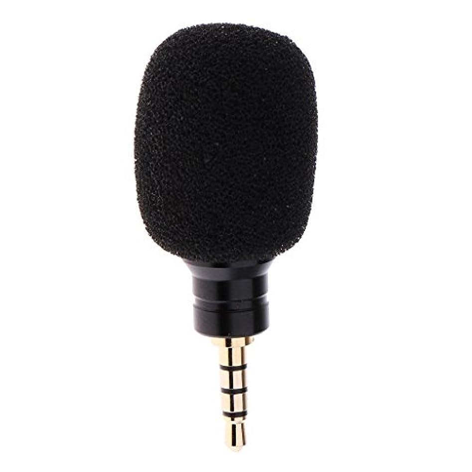案件シードアカデミック携帯電話IPhoneのための小型専門のコンデンサーマイクロフォンMicレコード - 黒