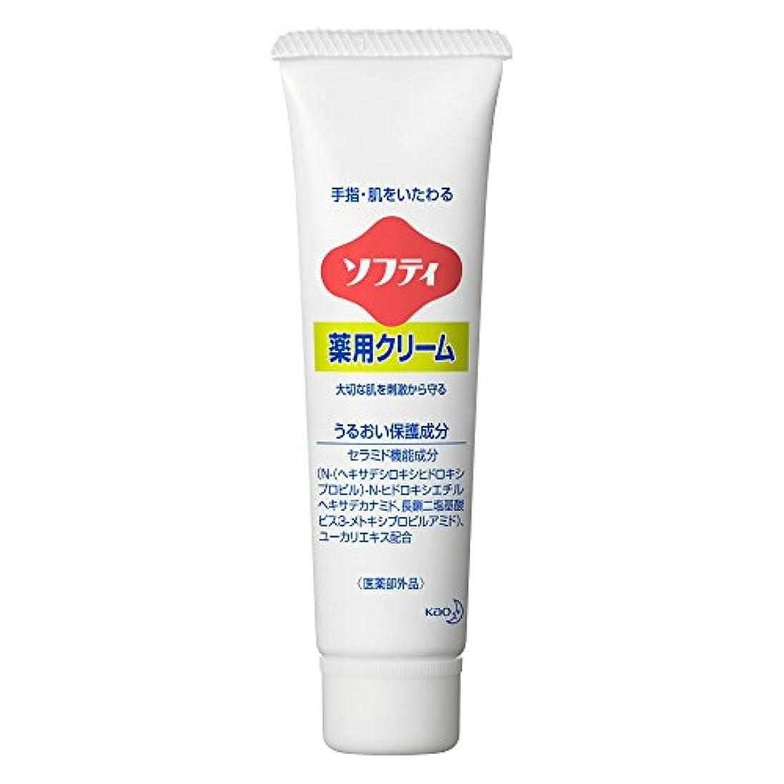 天気四回船酔いソフティ 薬用クリーム 35g (花王プロフェッショナルシリーズ)