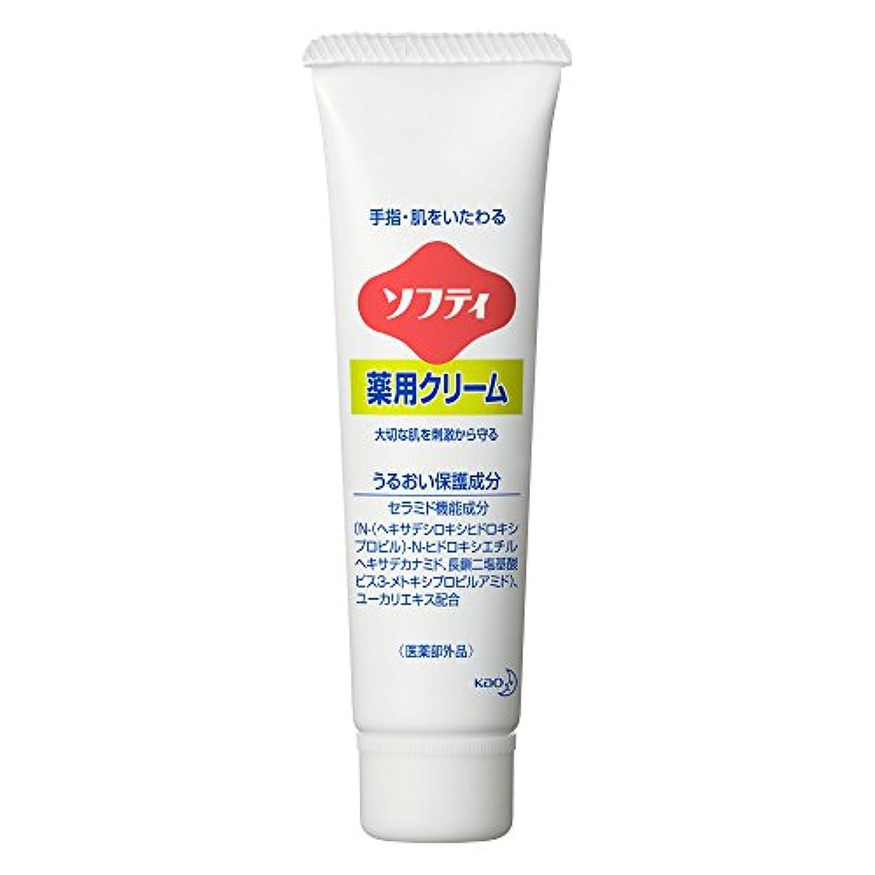 修羅場メロディアス持続的ソフティ 薬用クリーム 35g (花王プロフェッショナルシリーズ)