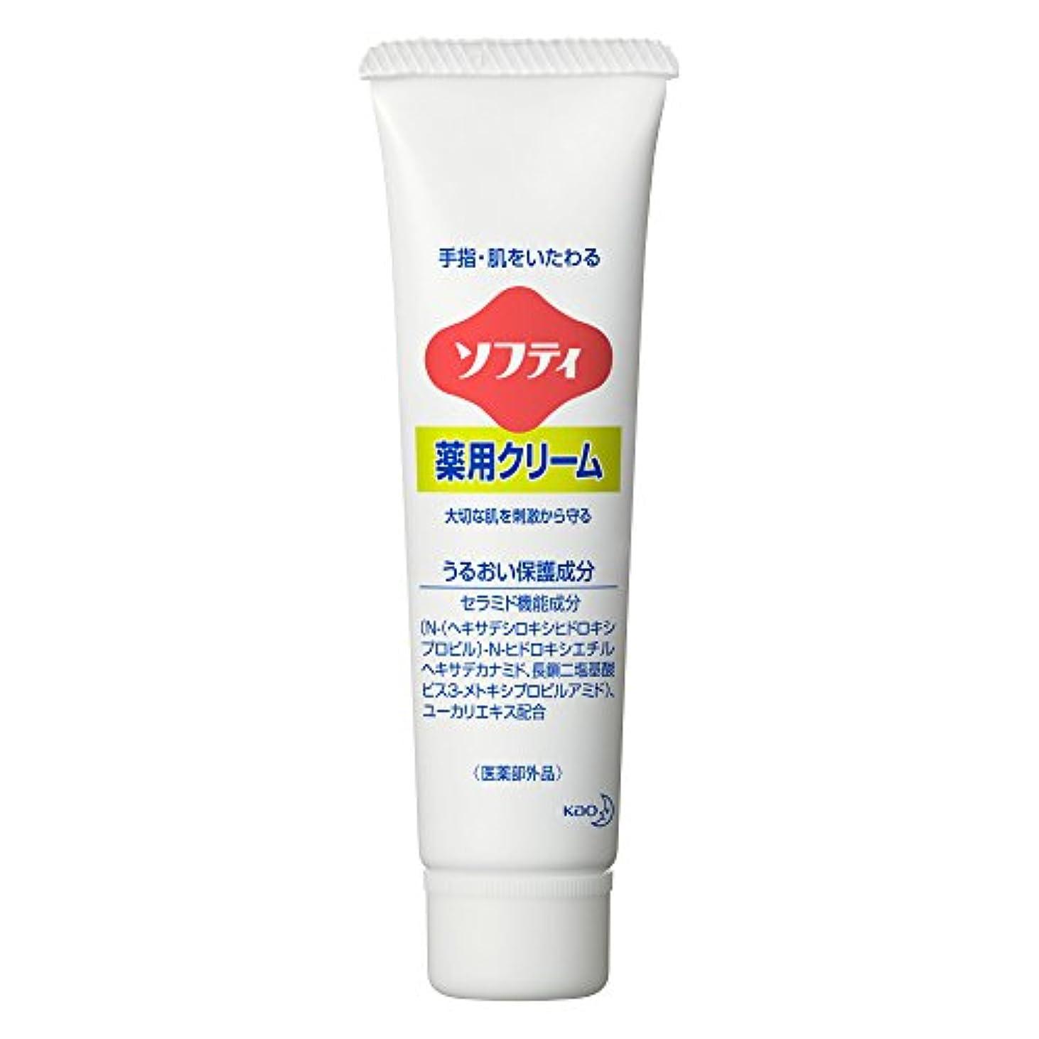 浸したホイスト訴えるソフティ 薬用クリーム 35g (花王プロフェッショナルシリーズ)