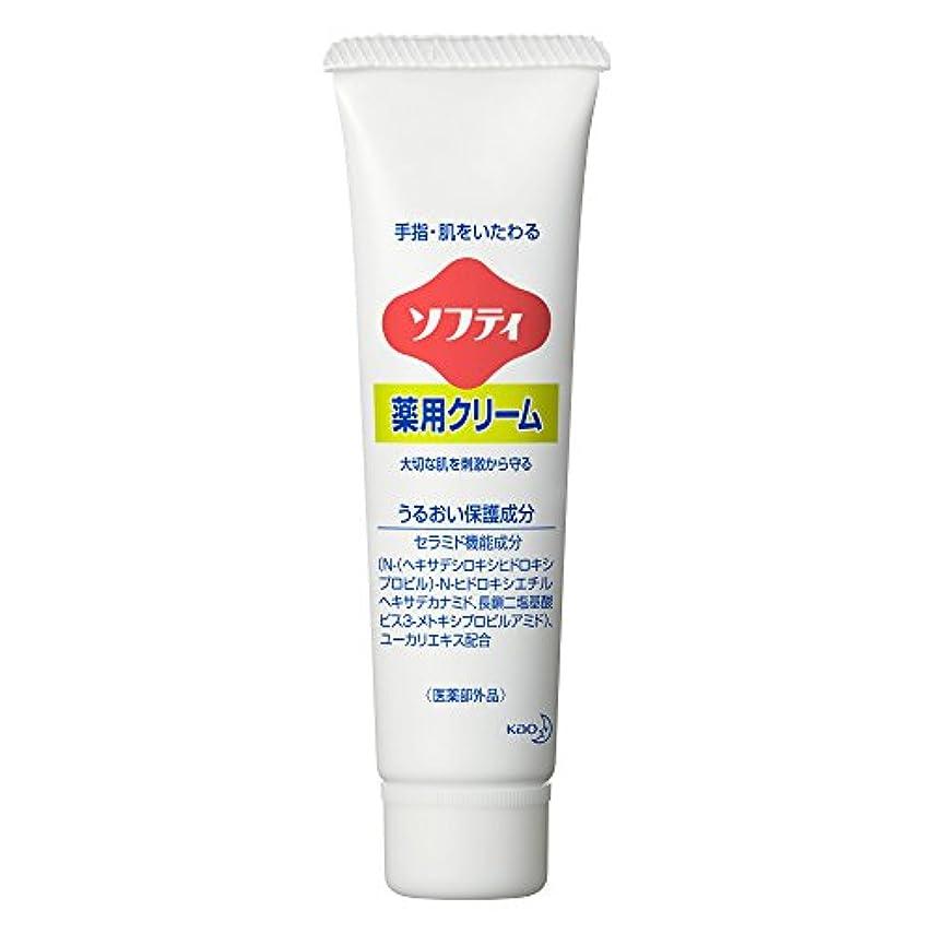 ルネッサンスなぜなら消費するソフティ 薬用クリーム 35g (花王プロフェッショナルシリーズ)