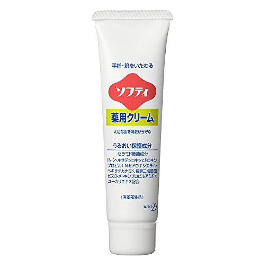 無謀間違い無心ソフティ 薬用クリーム 35g (花王プロフェッショナルシリーズ)