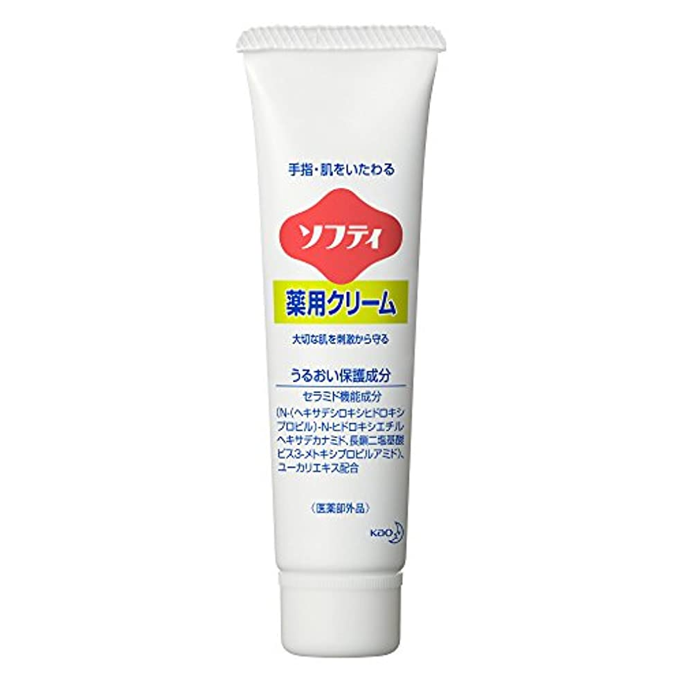 モバイル手配する寝室を掃除するソフティ 薬用クリーム 35g (花王プロフェッショナルシリーズ)