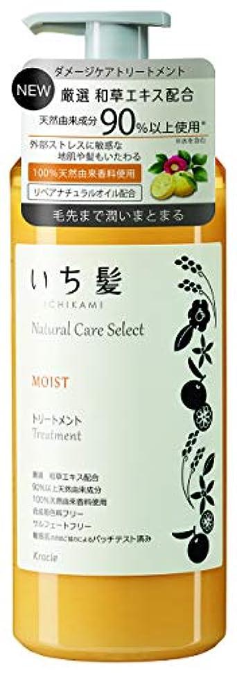 楽しいオレンジ例示するいち髪ナチュラルケアセレクト モイスト(毛先まで潤いまとまる)トリートメントポンプ480g シトラスフローラルの香り