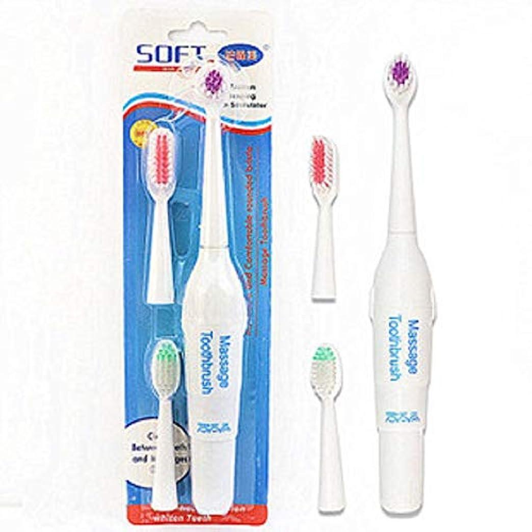 ペット電動歯ブラシ犬猫電動歯ブラシ、バッテリーなし(ハンドルフォントはランダムに3色で送信されます)(ホワイト)
