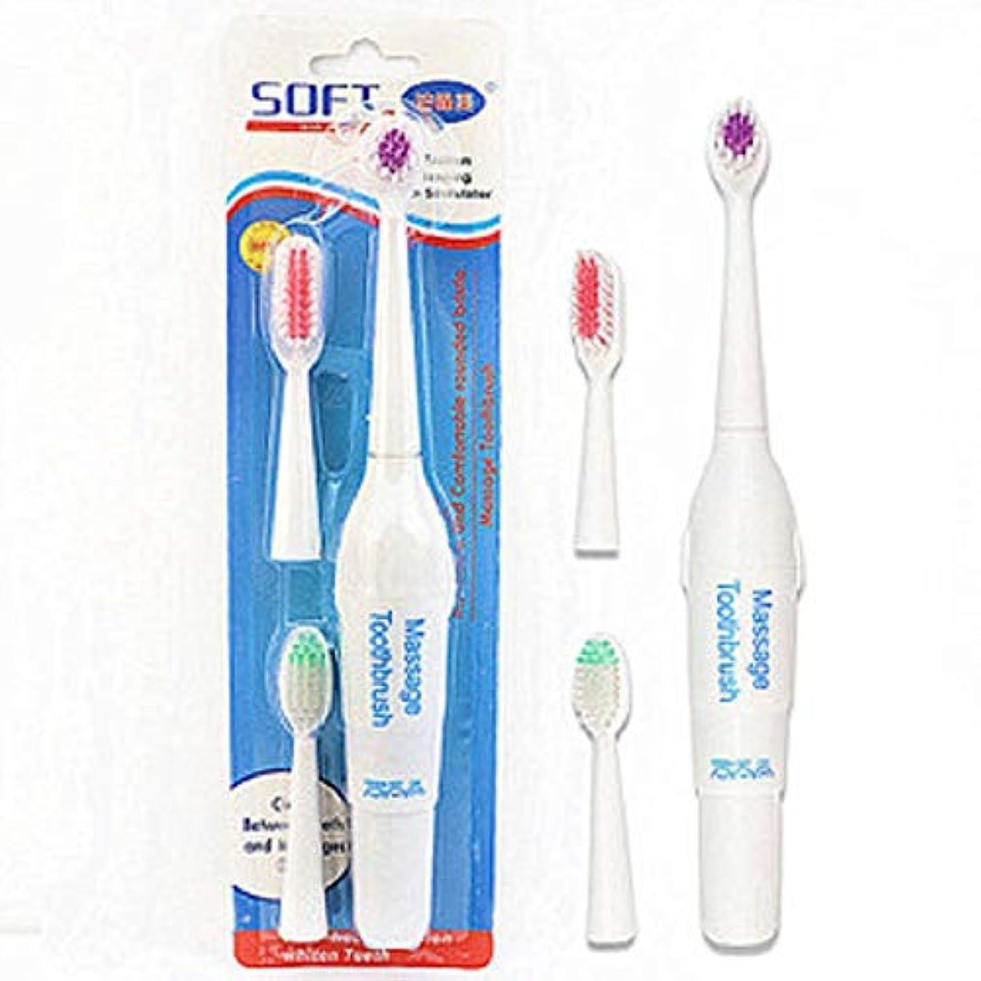 電気的散らす精緻化ペット電動歯ブラシ犬猫電動歯ブラシ、バッテリーなし(ハンドルフォントはランダムに3色で送信されます)(ホワイト)