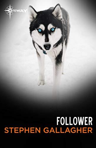 Follower (English Edition)
