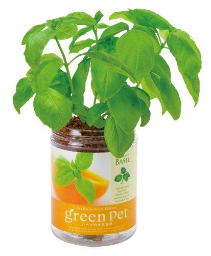 育てるグリーンペット ハーブ