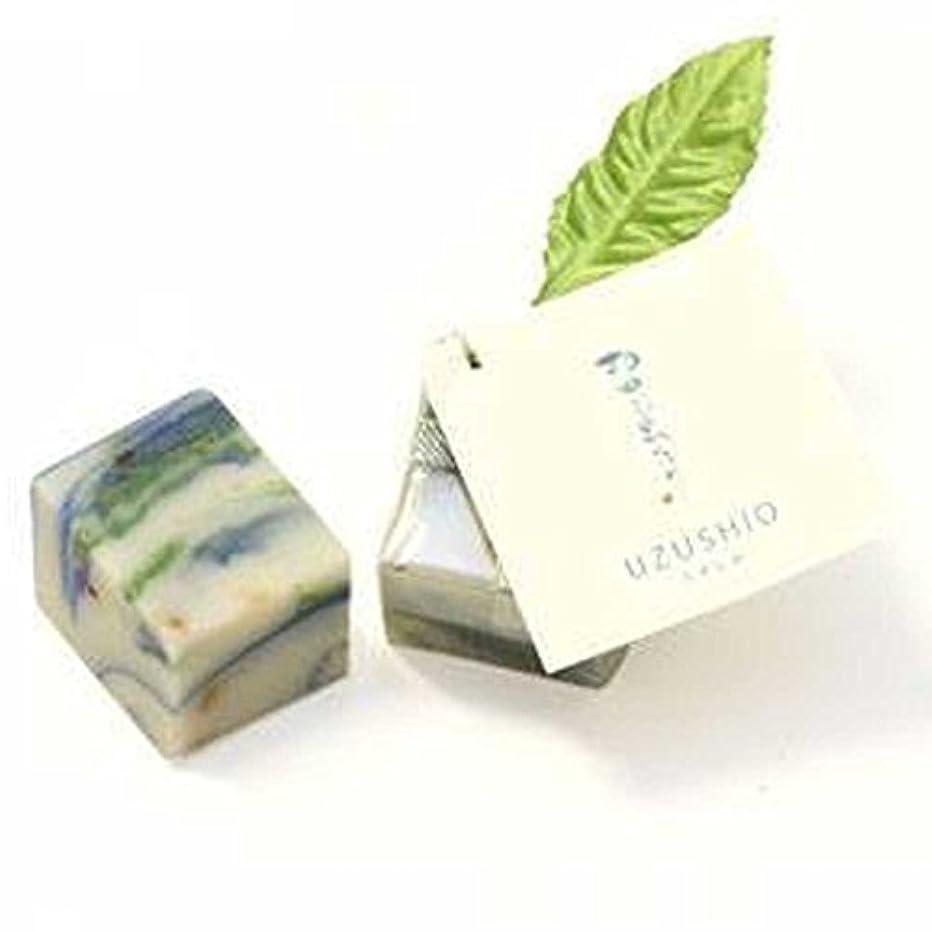 周囲特徴づける単位Herb?Room leaf UZUSHIO石けん 25g×2個