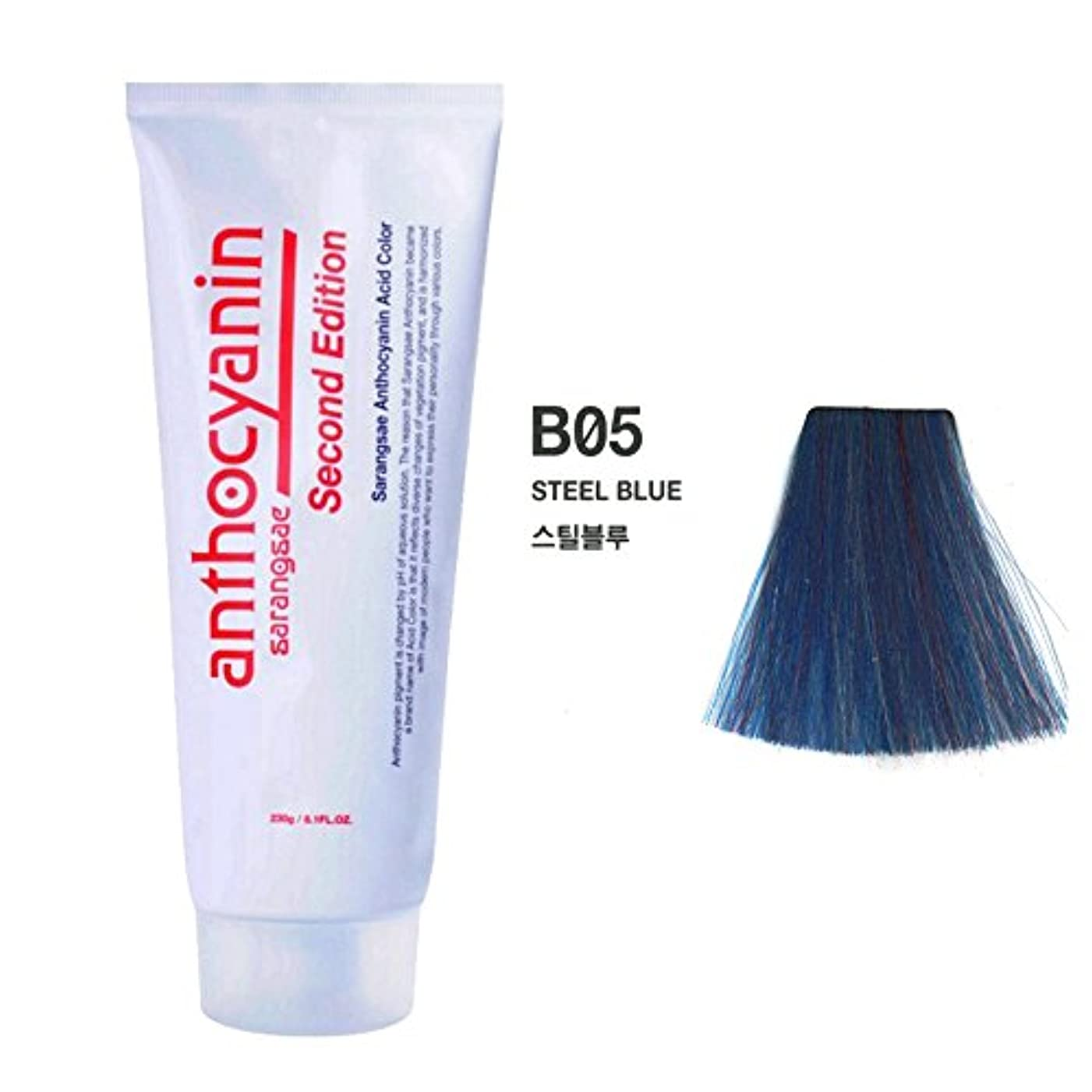 直感積分夢中ヘア マニキュア カラー セカンド エディション 230g セミ パーマネント 染毛剤 (Hair Manicure Color Second Edition 230g Semi Permanent Hair Dye) [並行輸入品] (B05 Steel Blue)
